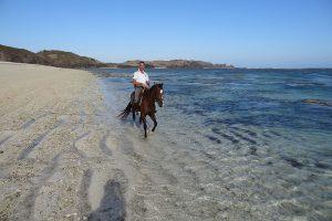 xavier-mongin-horse-riding-11